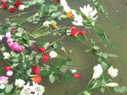 Blomster i Spikersuppa